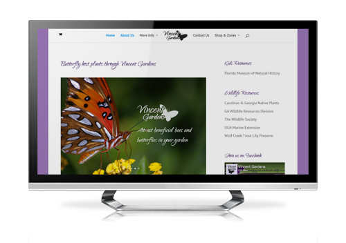 ecommerce website design Vincent Gardens